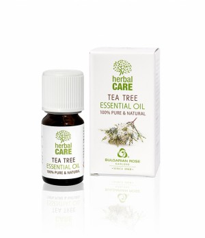 100% essential oil from tea tree Bulgarian Rose Karlovo